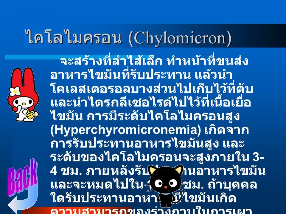 ไคโลไมครอน (Chylomicron)