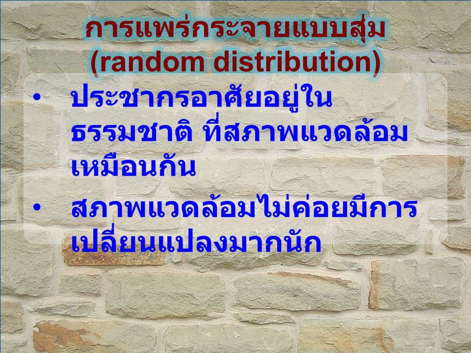 การแพร่กระจายแบบสุ่ม (random distribution)