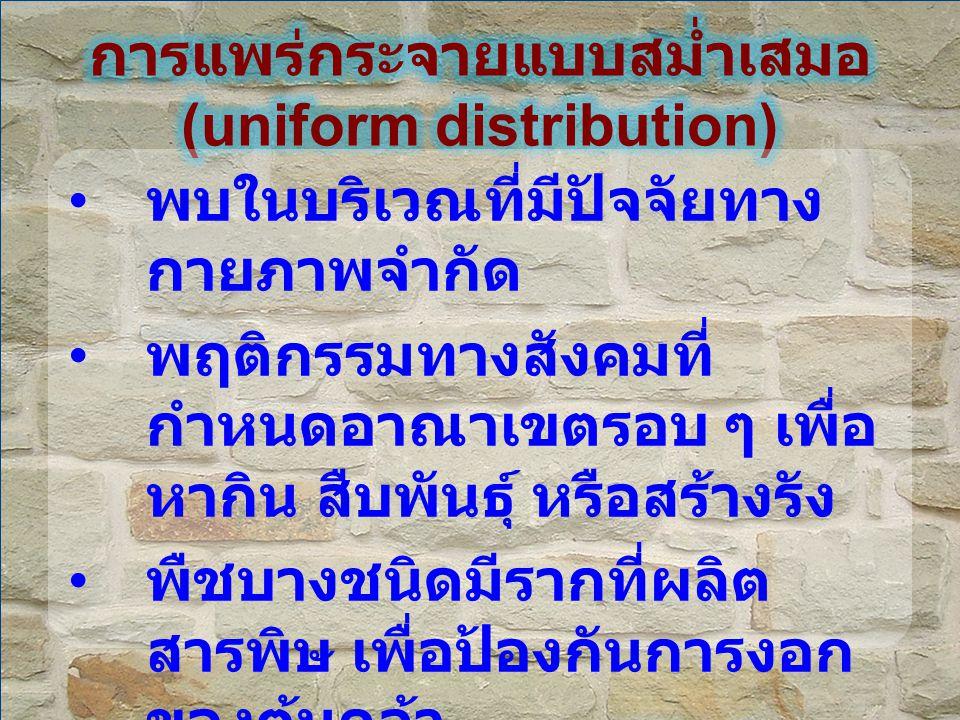 การแพร่กระจายแบบสม่ำเสมอ (uniform distribution)