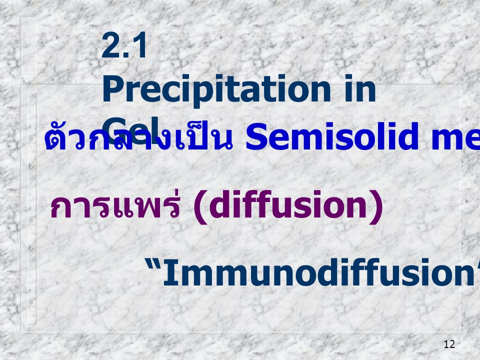 2.1 Precipitation in Gel ตัวกลางเป็น Semisolid media -เช่นวุ้น (gel) การแพร่ (diffusion) Immunodiffusion