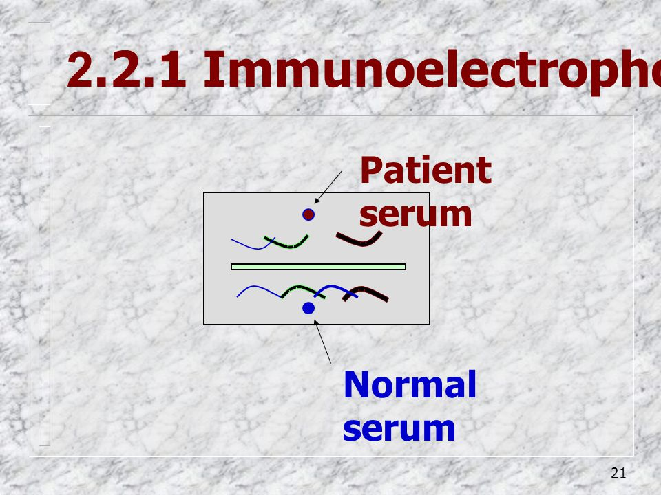 2.2.1 Immunoelectrophoresis (IEP)