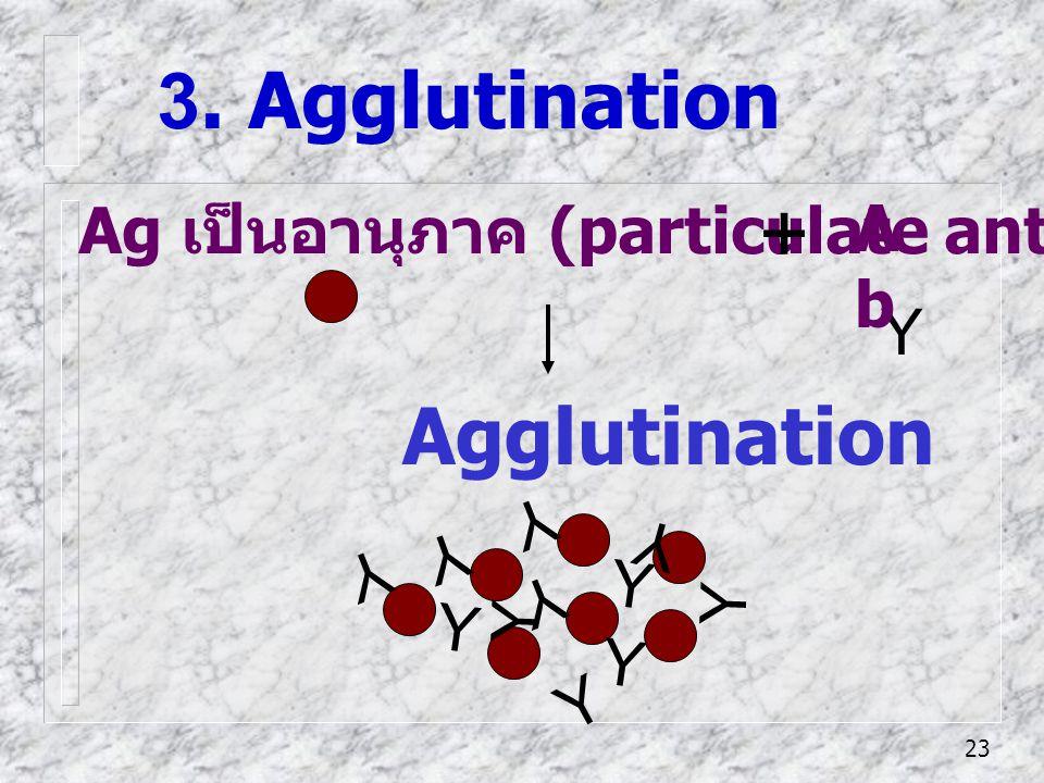 + 3. Agglutination Agglutination Ab