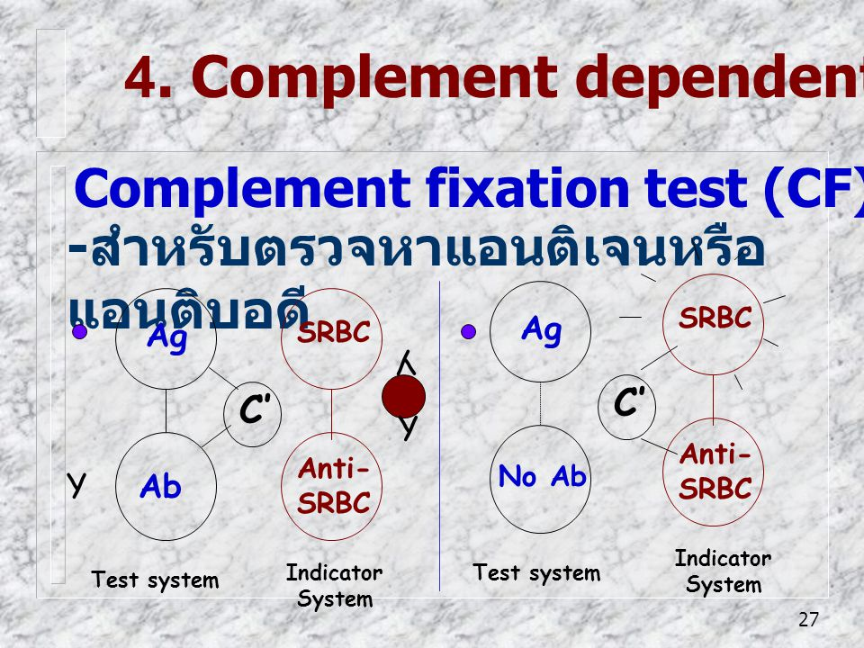 4. Complement dependent reaction