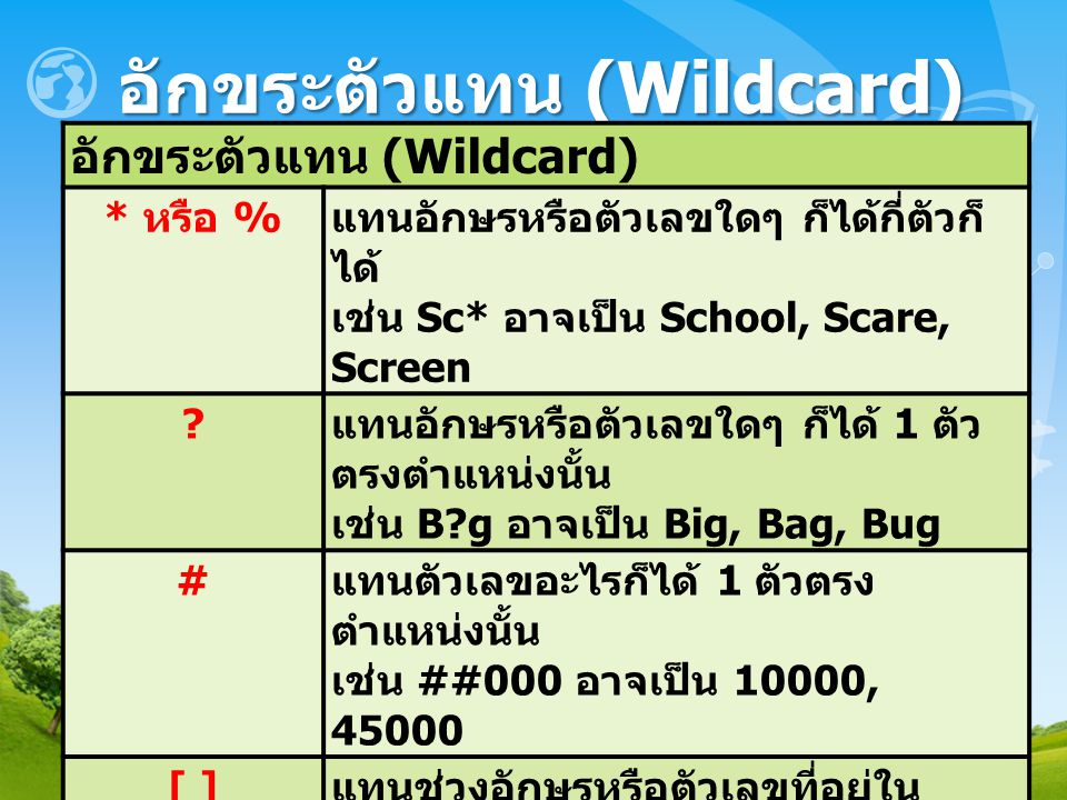 อักขระตัวแทน (Wildcard)