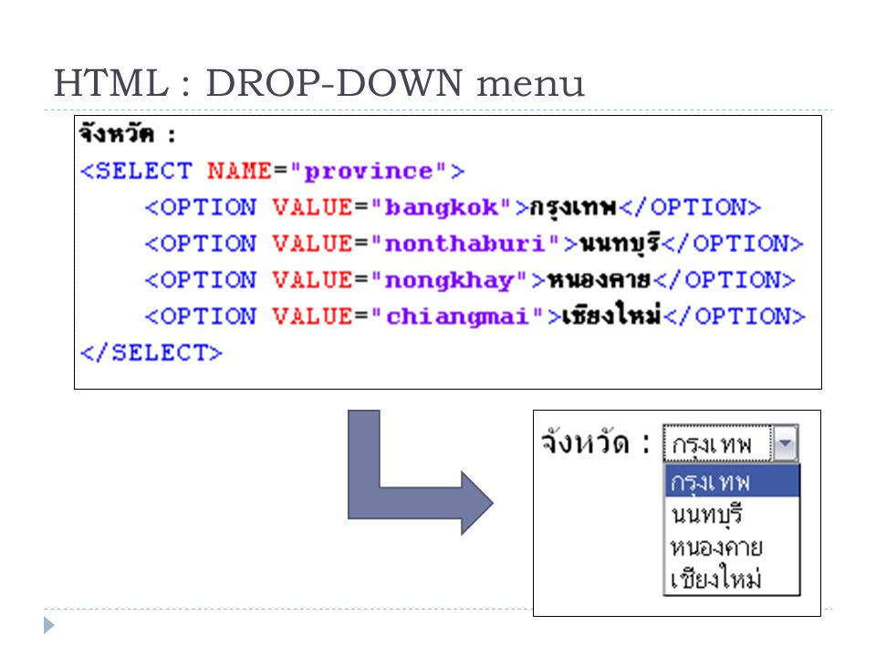 HTML : DROP-DOWN menu
