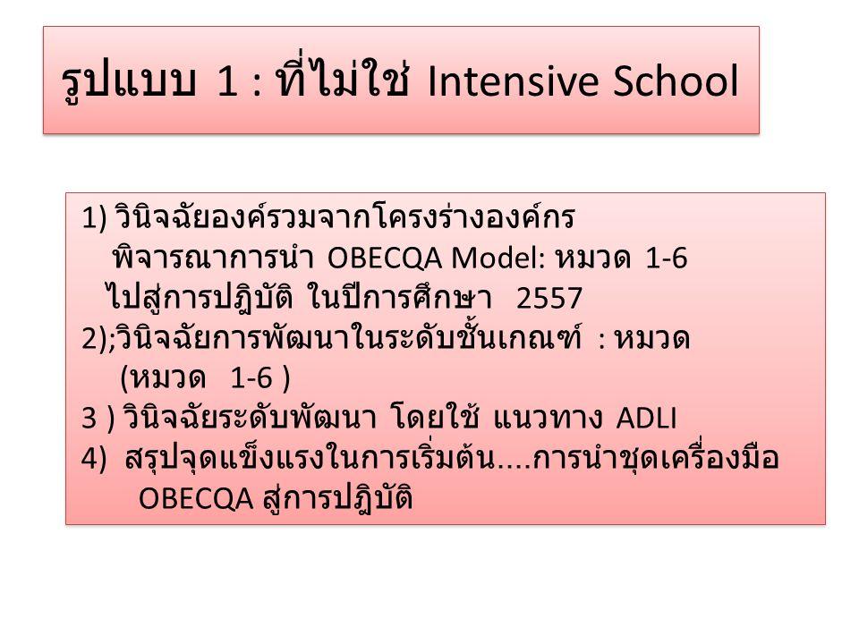 รูปแบบ 1 : ที่ไม่ใช่ Intensive School