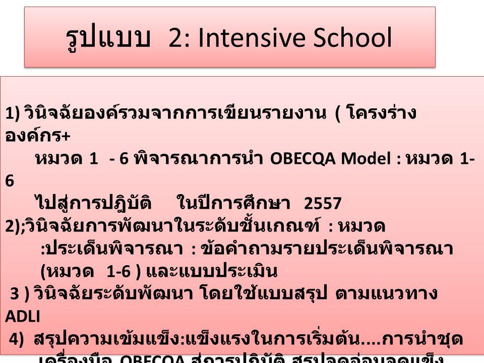 รูปแบบ 2: Intensive School
