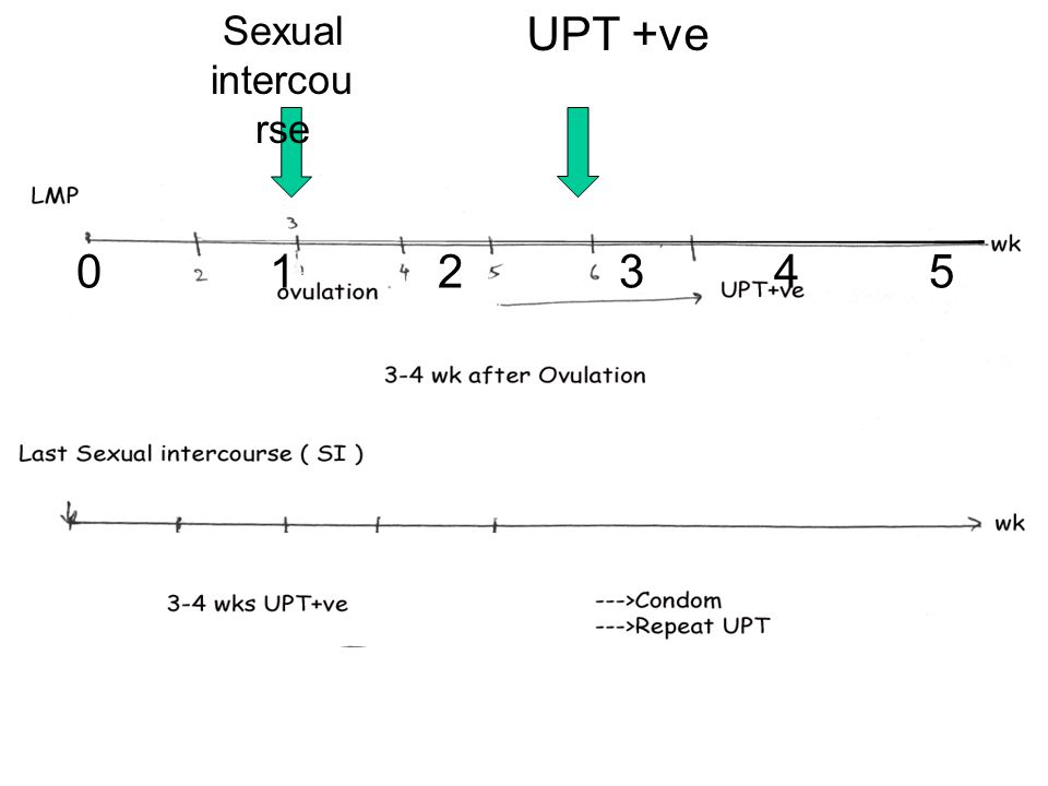 Sexual intercourse UPT +ve.