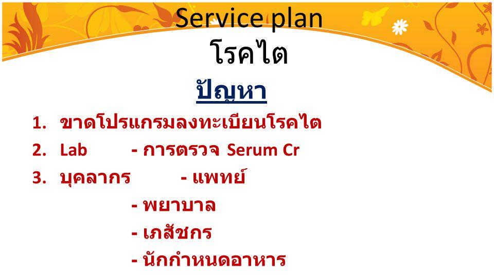 Service plan โรคไต ปัญหา ขาดโปรแกรมลงทะเบียนโรคไต