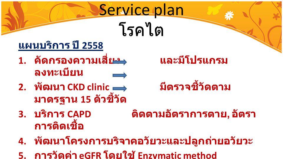Service plan โรคไต แผนบริการ ปี 2558