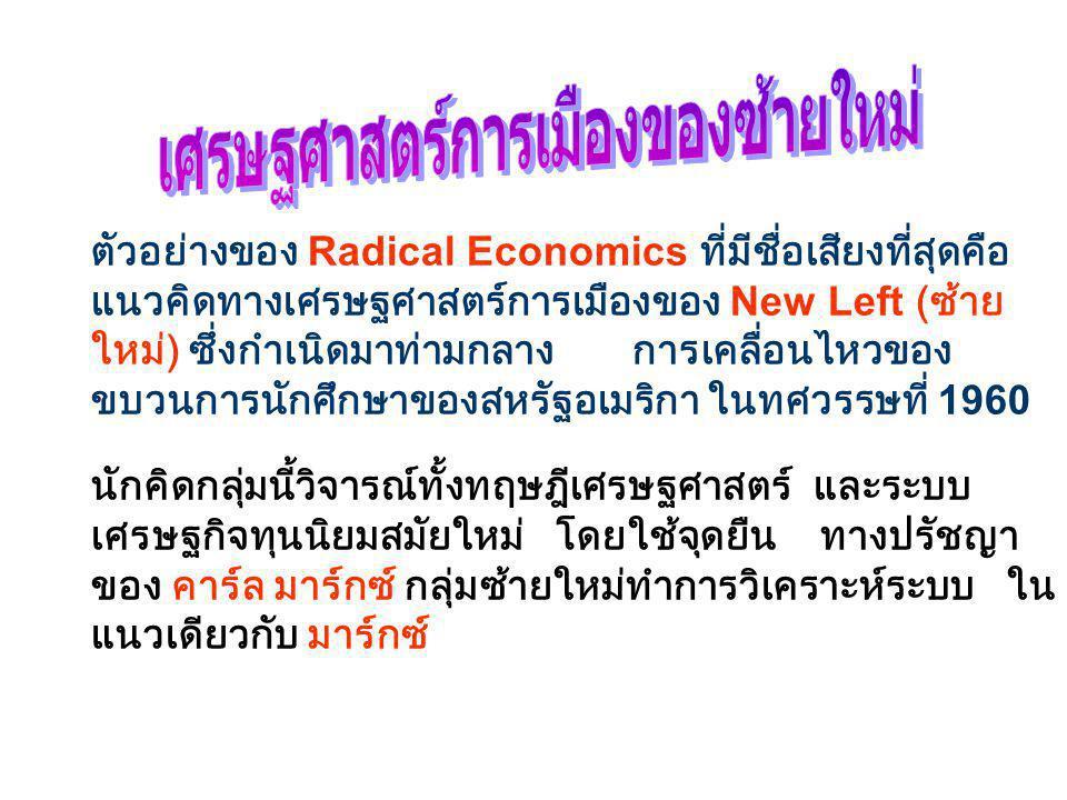 เศรษฐศาสตร์การเมืองของซ้ายใหม่