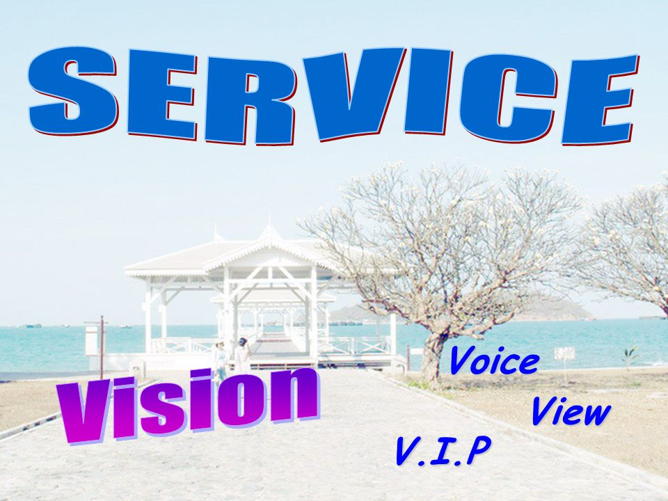 SERVICE Voice Vision View V.I.P