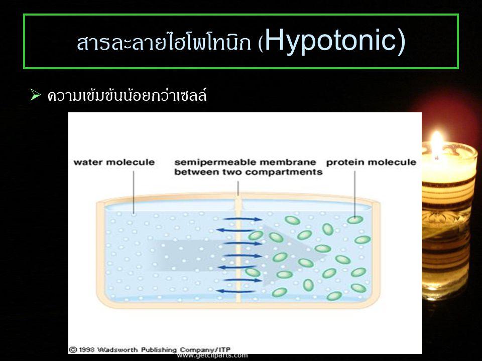 สารละลายไฮโพโทนิก (Hypotonic)