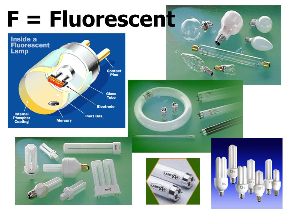 F = Fluorescent