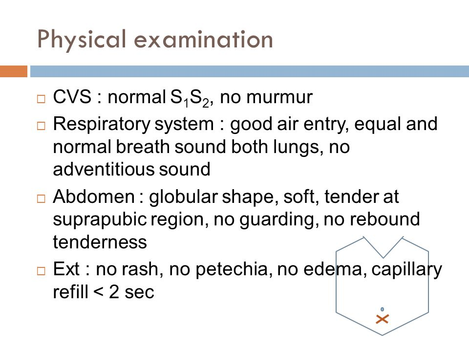 Physical examination CVS : normal S1S2, no murmur