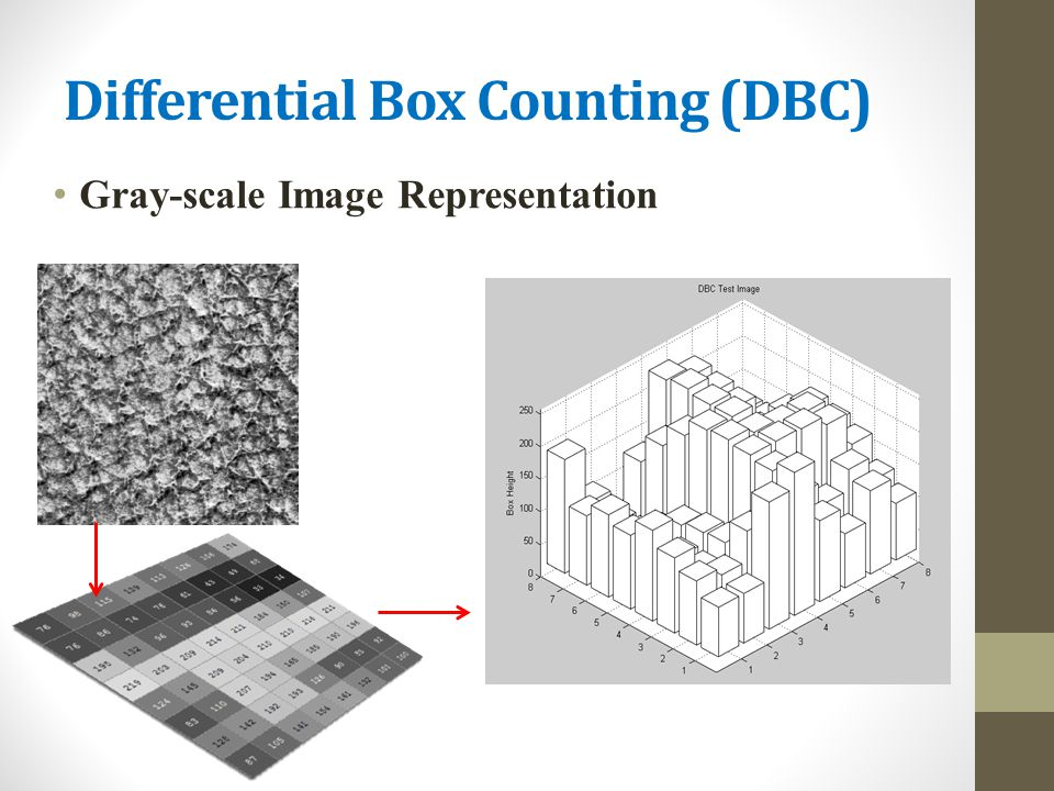 Differential Box Counting (DBC)