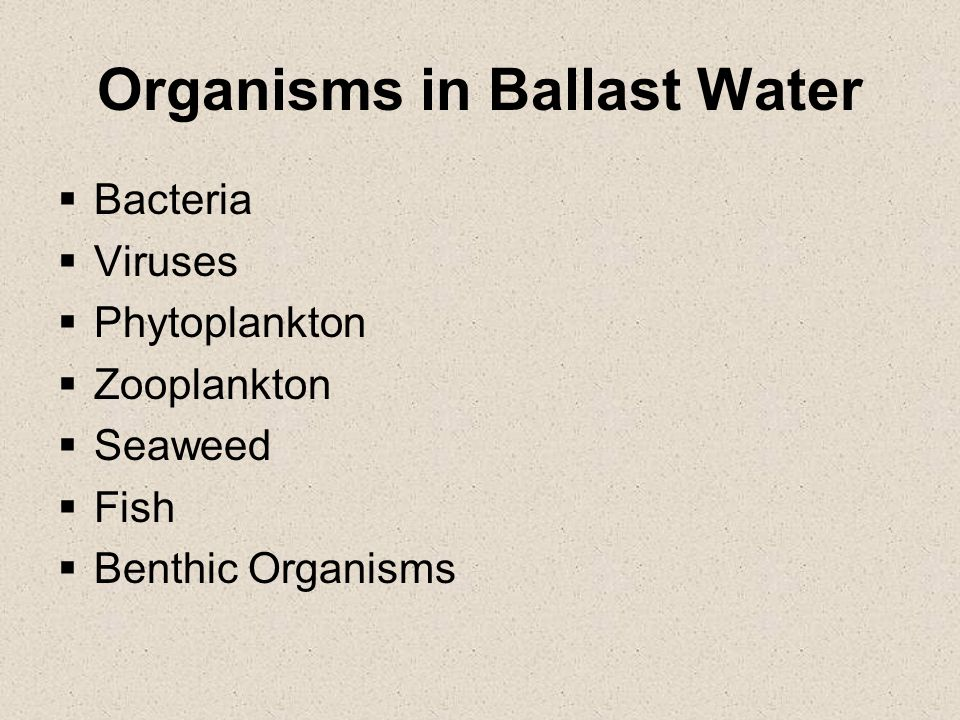 Organisms in Ballast Water
