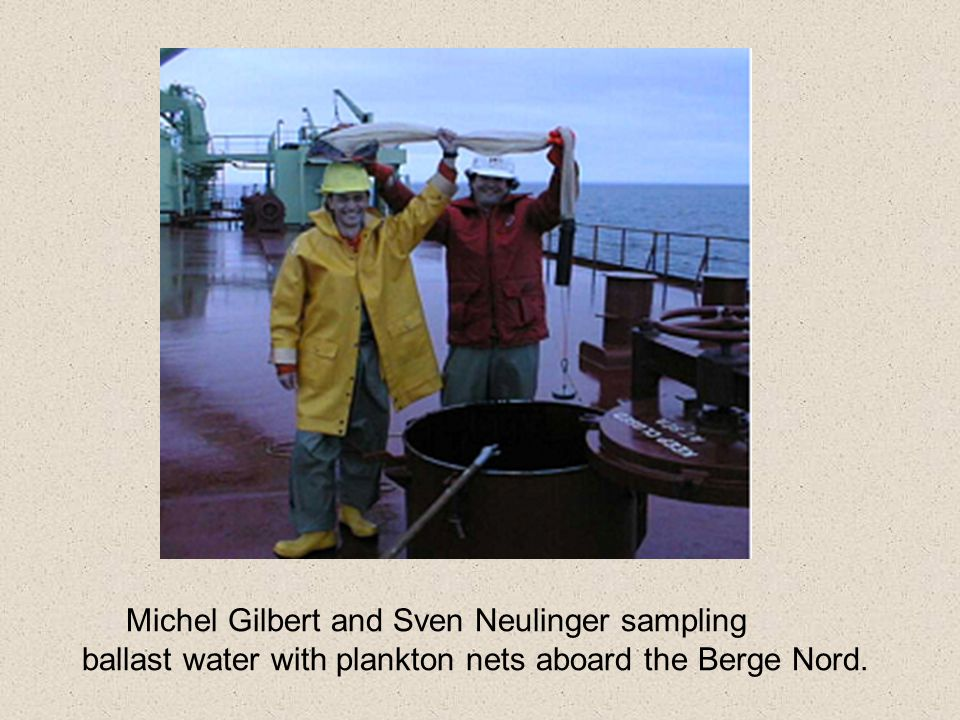 Michel Gilbert and Sven Neulinger sampling
