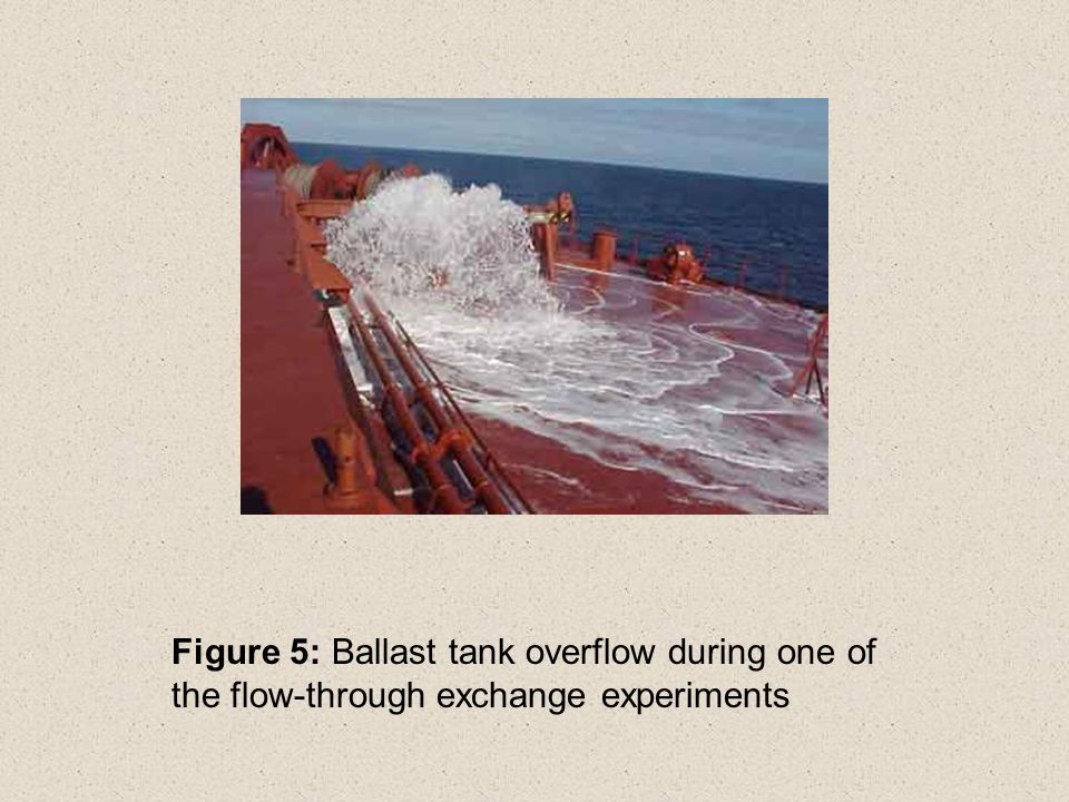 Figure 5: Ballast tank overflow during one of the flow-through exchange experiments