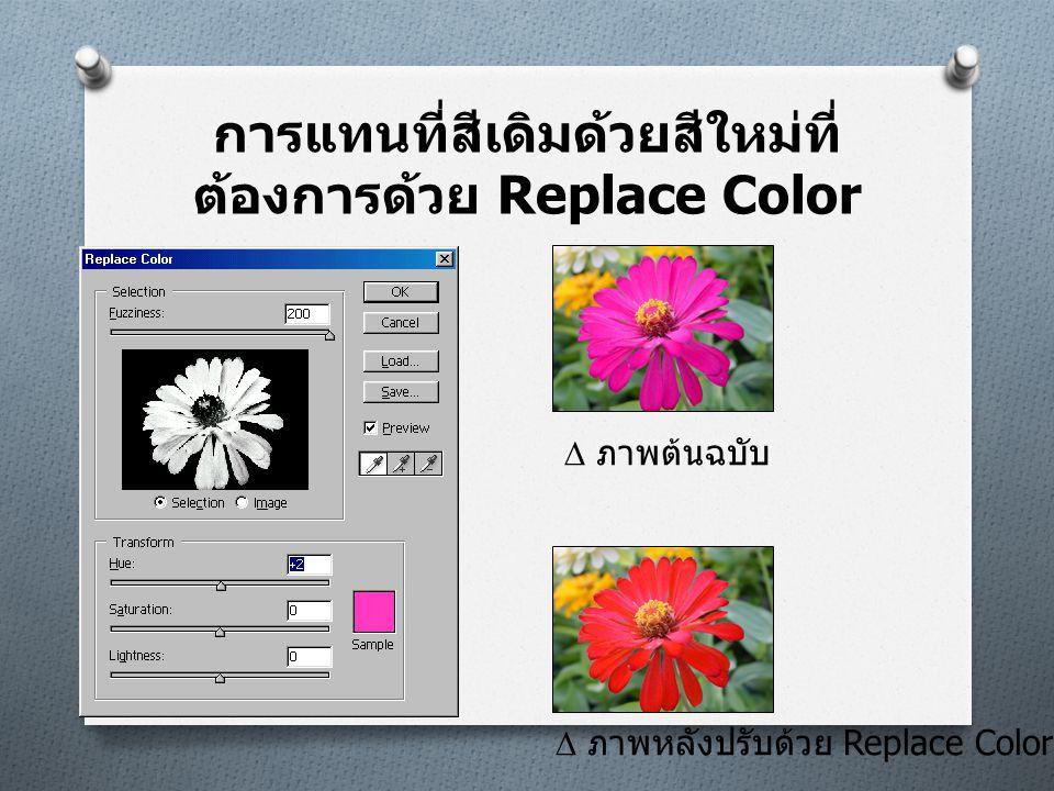 การแทนที่สีเดิมด้วยสีใหม่ที่ต้องการด้วย Replace Color