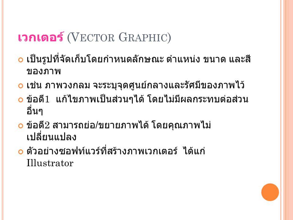เวกเตอร์ (Vector Graphic)