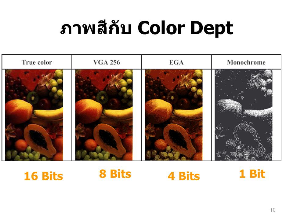 ภาพสีกับ Color Dept 8 Bits 1 Bit 16 Bits 4 Bits