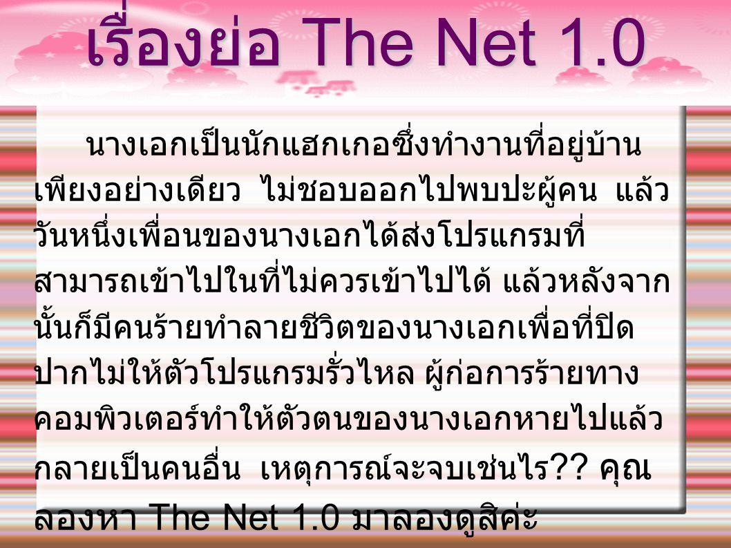 เรื่องย่อ The Net 1.0
