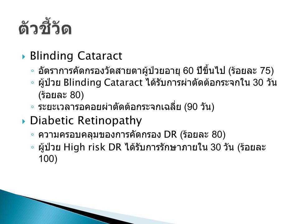 ตัวชี้วัด Blinding Cataract Diabetic Retinopathy
