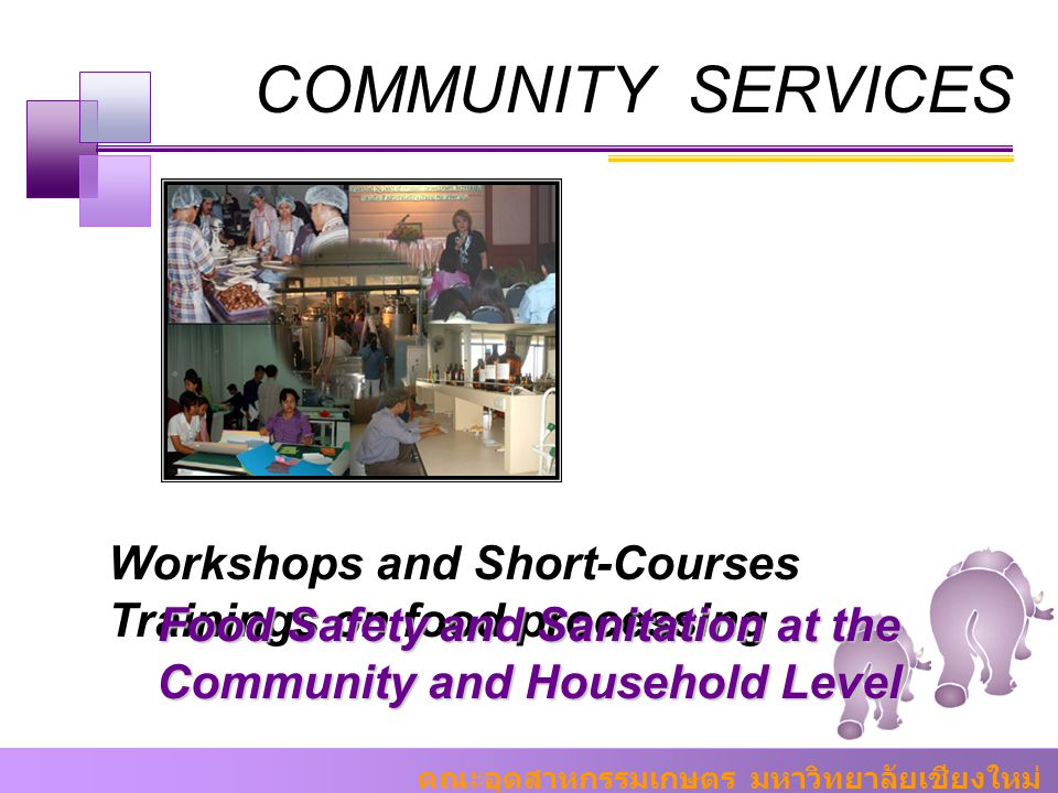 Food Safety and Sanitation at the Community and Household Level