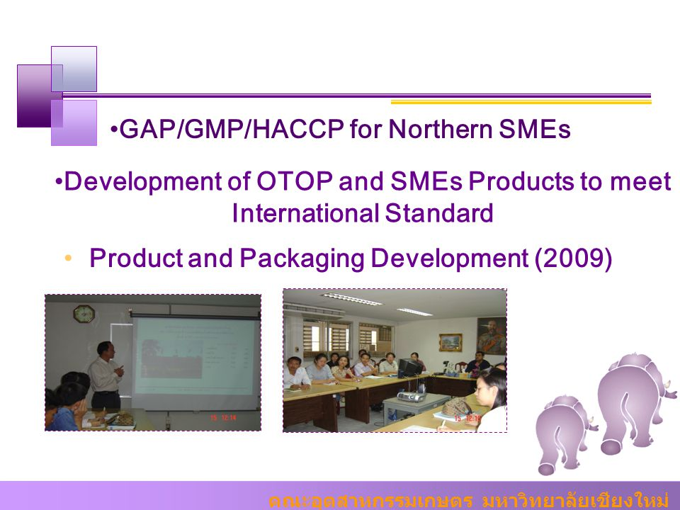 Development of OTOP and SMEs Products to meet International Standard