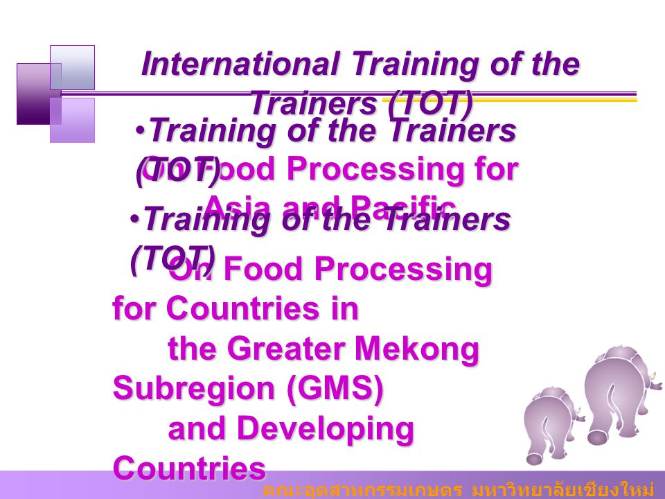 International Training of the Trainers (TOT)
