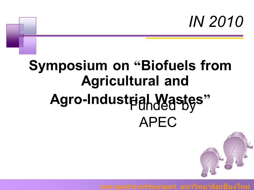 Symposium on Biofuels from Agricultural and Agro-Industrial Wastes