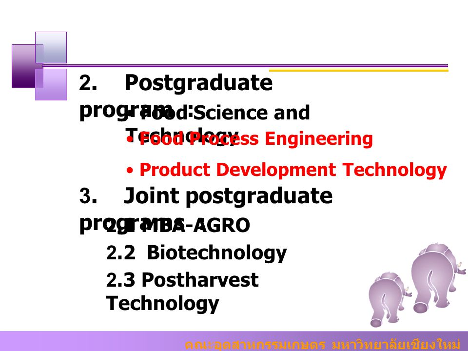 2. Postgraduate program :
