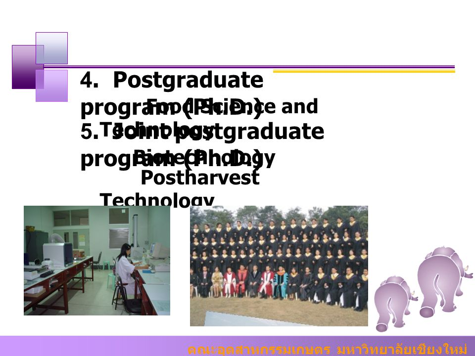4. Postgraduate program (Ph.D.)