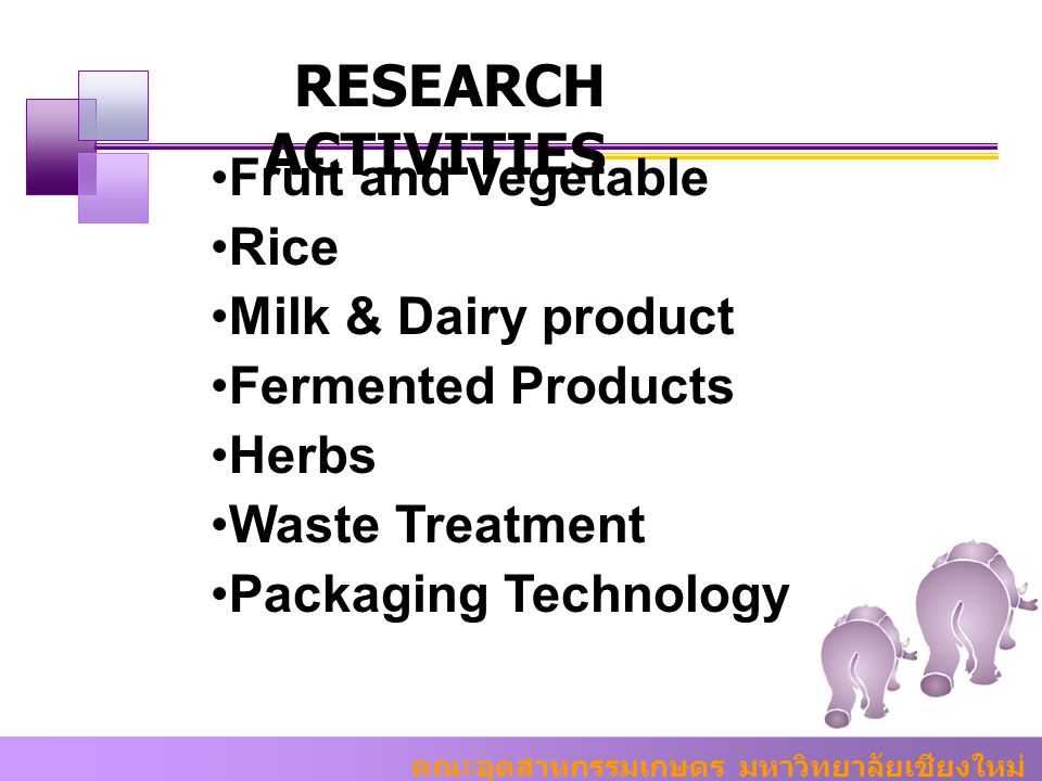 RESEARCH ACTIVITIES Fruit and Vegetable Rice Milk & Dairy product