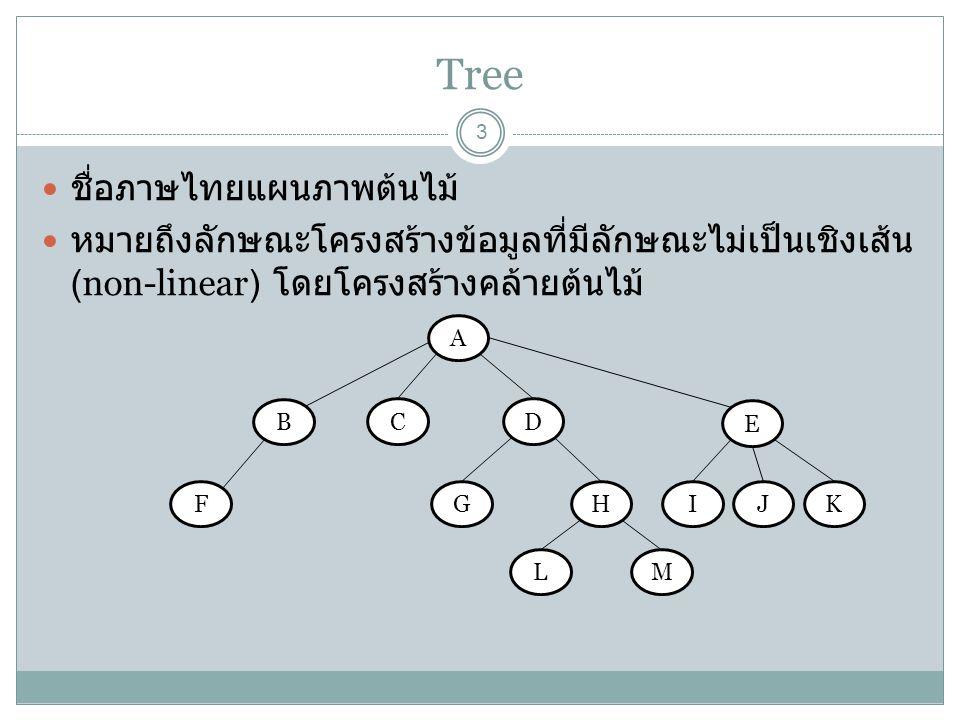 Tree ชื่อภาษไทยแผนภาพต้นไม้
