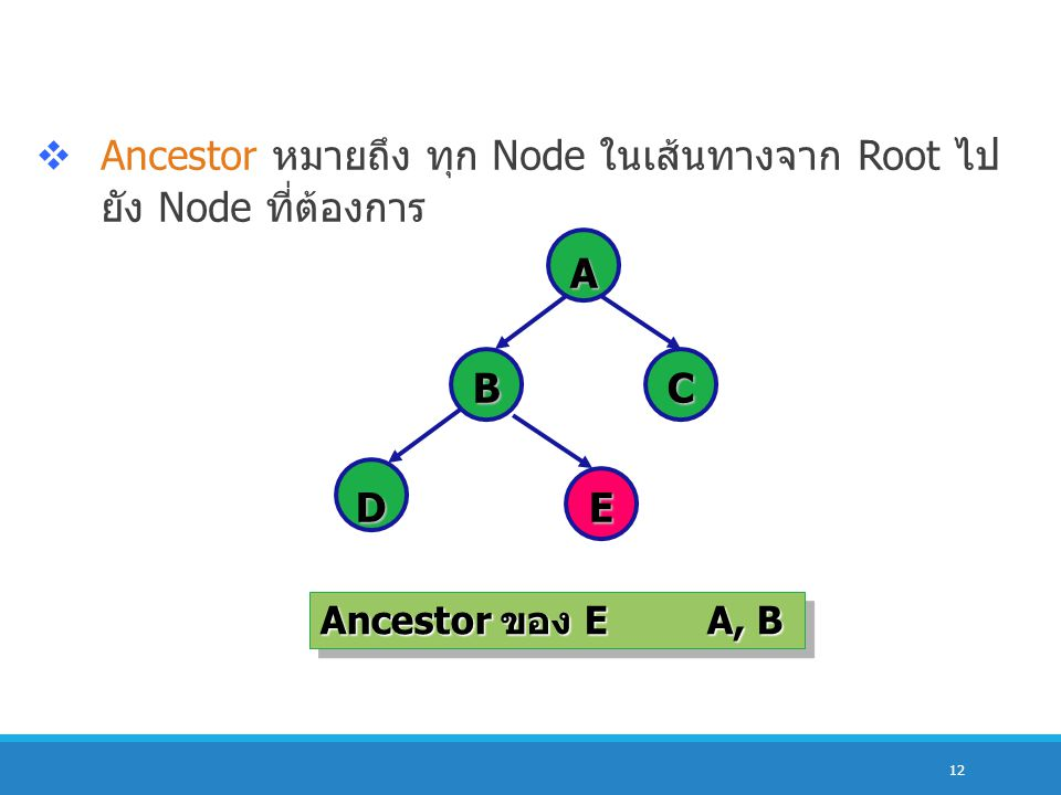 Ancestor หมายถึง ทุก Node ในเส้นทางจาก Root ไปยัง Node ที่ต้องการ