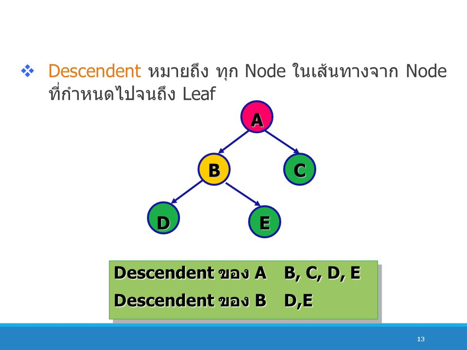 Descendent หมายถึง ทุก Node ในเส้นทางจาก Node ที่กำหนดไปจนถึง Leaf