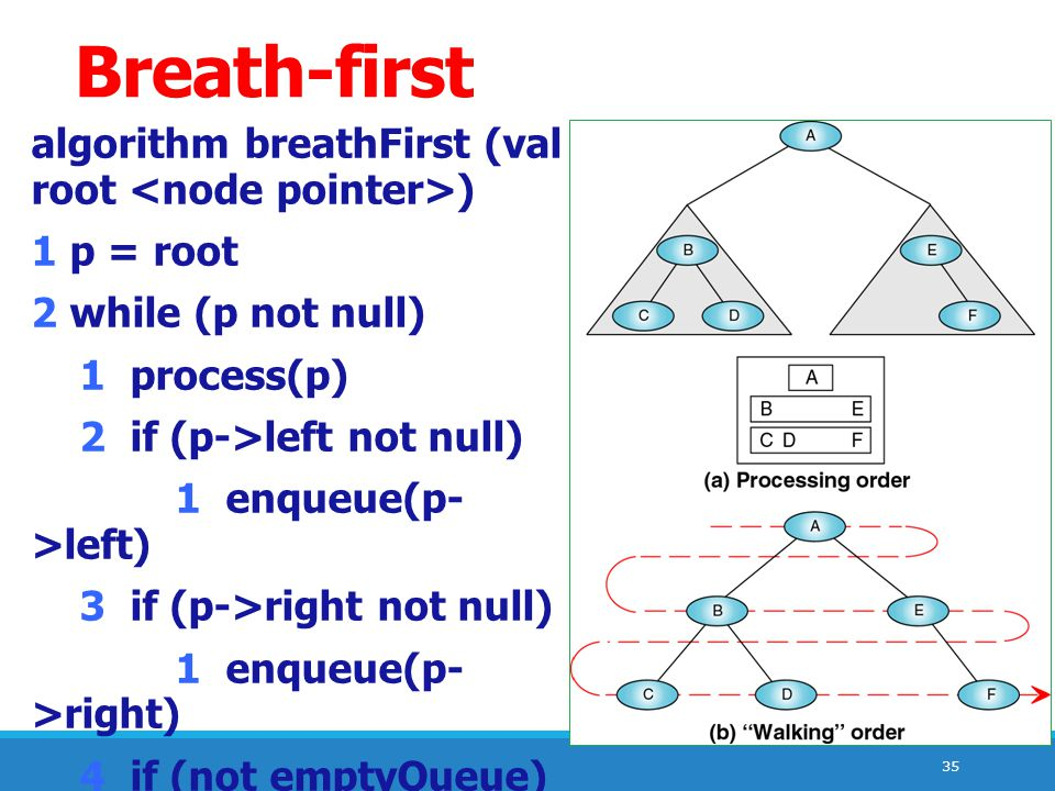 Breath-first algorithm breathFirst (val root <node pointer>)