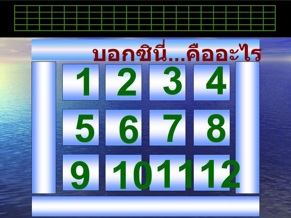 บอกซินี่...คืออะไร 1 2 3 4 5 6 7 8 9 10 11 12
