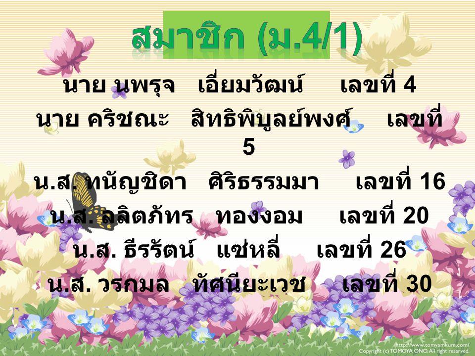 สมาชิก (ม.4/1)