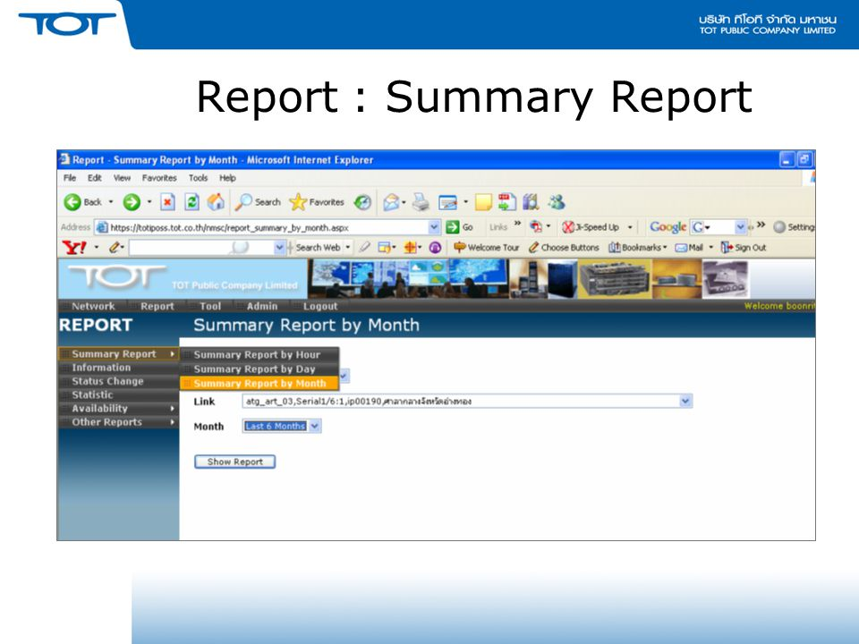 Report : Summary Report