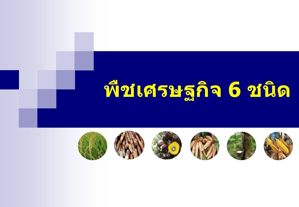 พืชเศรษฐกิจ 6 ชนิด