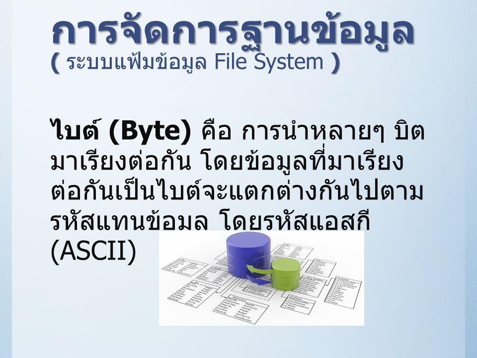 การจัดการฐานข้อมูล ( ระบบแฟ้มข้อมูล File System )