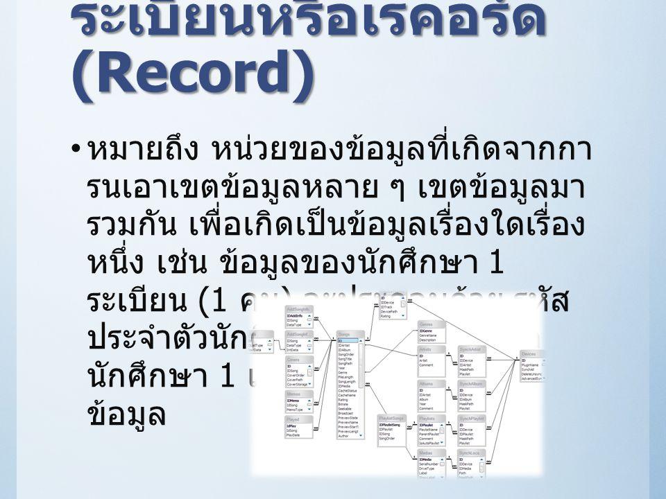 ระเบียนหรือเรคอร์ด (Record)