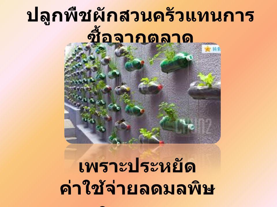 ปลูกพืชผักสวนครัวแทนการซื้อจากตลาด