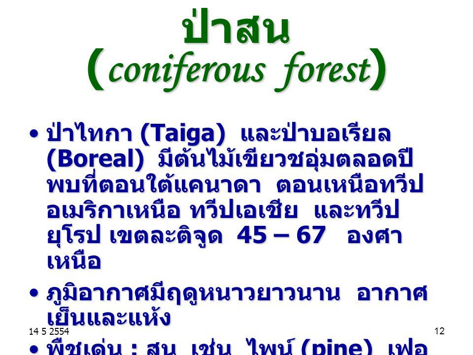 ป่าสน (coniferous forest)