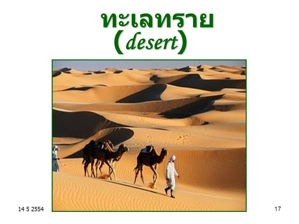 ทะเลทราย (desert) 14 5 2554