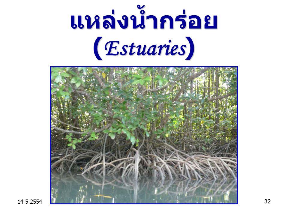 แหล่งน้ำกร่อย (Estuaries)