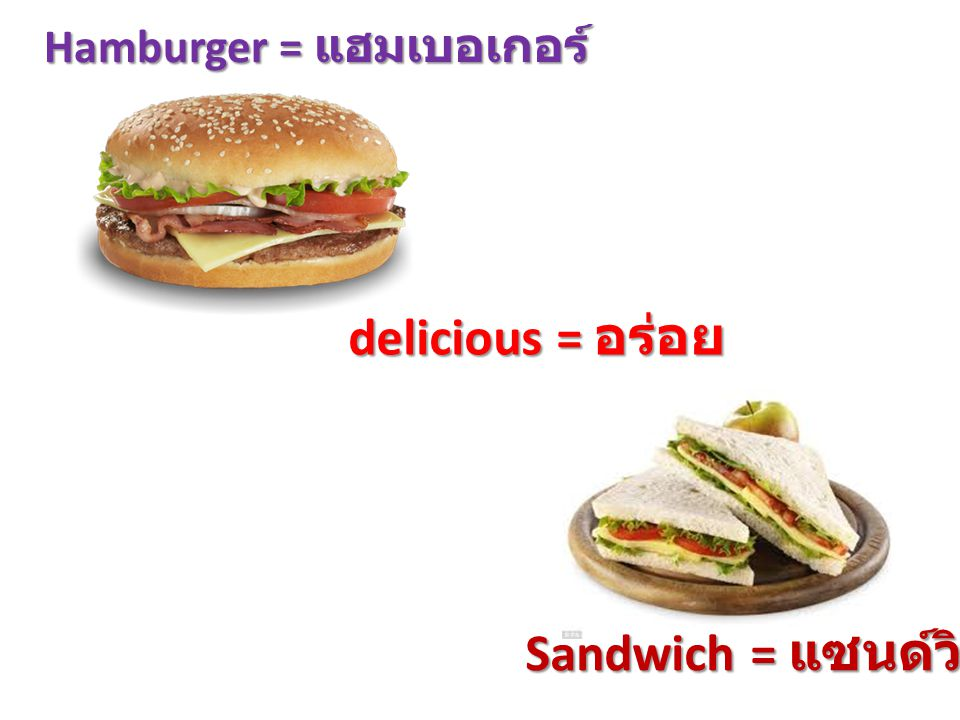 Hamburger = แฮมเบอเกอร์